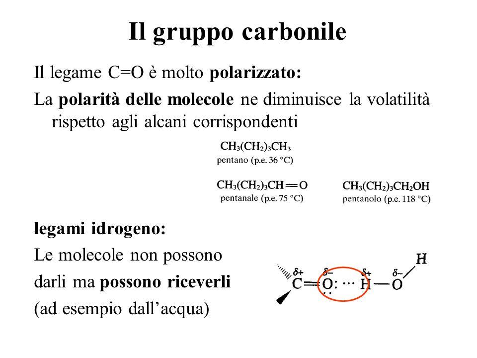 Il gruppo carbonile Il legame C=O è molto polarizzato: La polarità delle molecole ne diminuisce la volatilità rispetto agli alcani corrispondenti lega