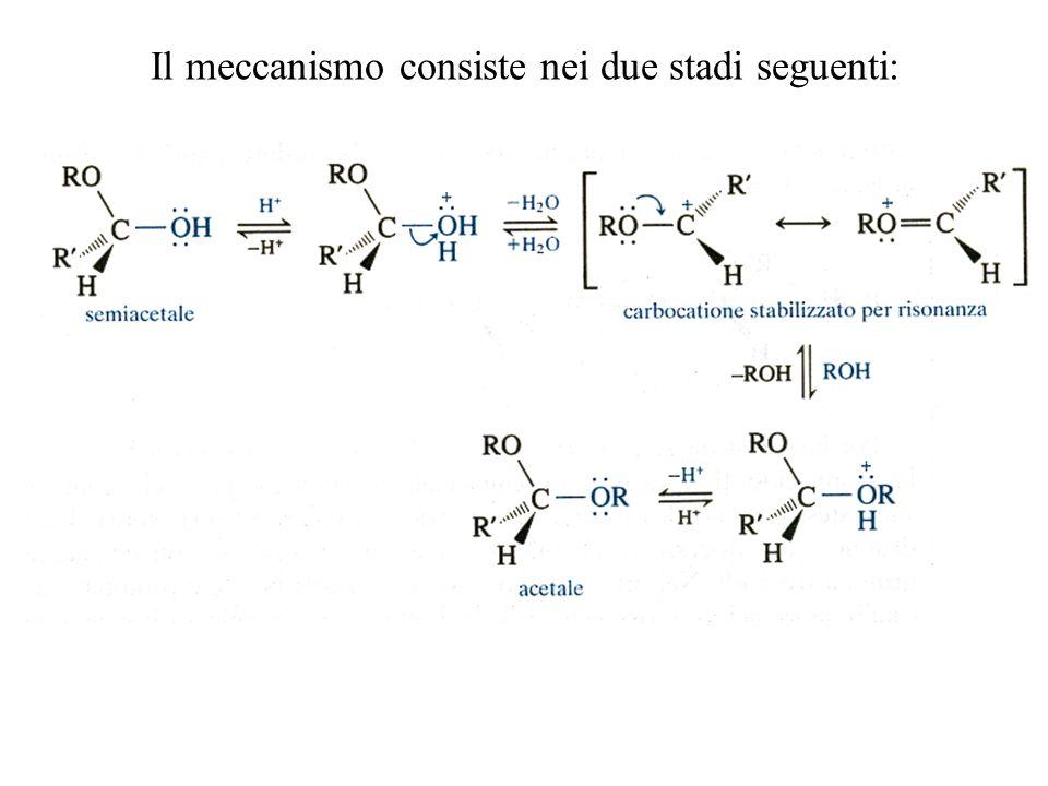 Il meccanismo consiste nei due stadi seguenti: