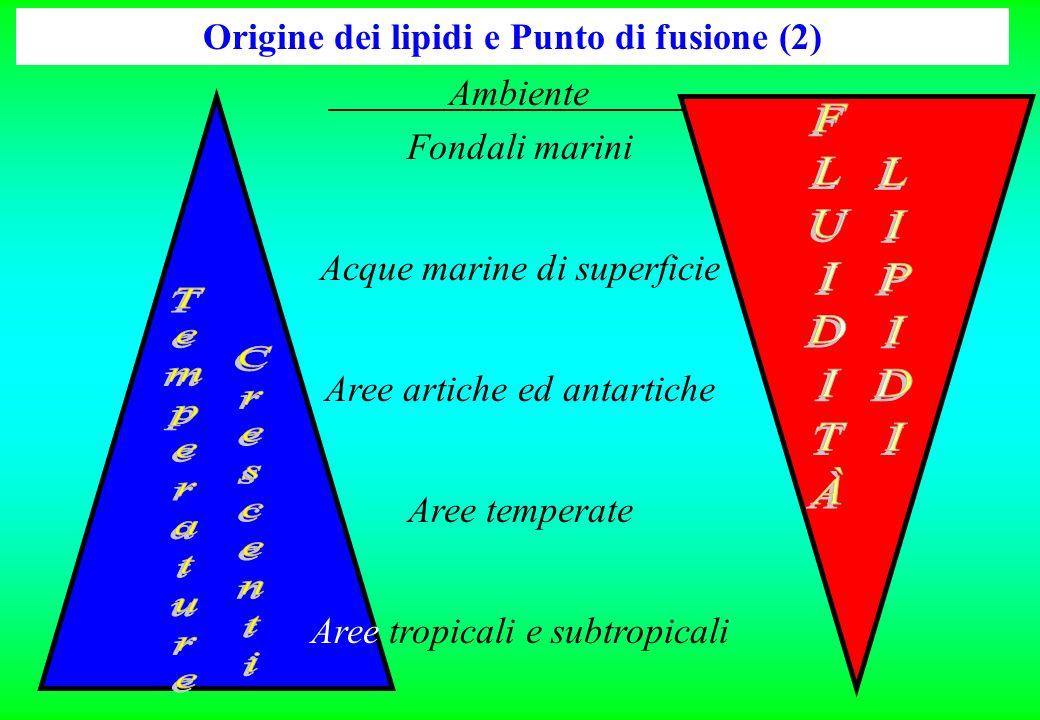 Origine dei lipidi e Punto di fusione (2) Ambiente Fondali marini Acque marine di superficie Aree artiche ed antartiche Aree temperate Aree tropicali e subtropicali