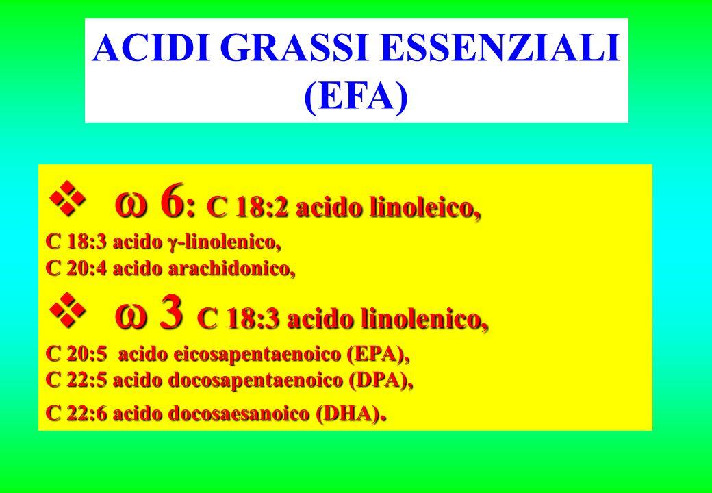 6 : C 18:2 acido linoleico, 6 : C 18:2 acido linoleico, C 18:3 acido -linolenico, C 20:4 acido arachidonico, 3 C 18:3 acido linolenico, 3 C 18:3 acido linolenico, C 20:5 acido eicosapentaenoico (EPA), C 22:5 acido docosapentaenoico (DPA), C 22:6 acido docosaesanoico (DHA).