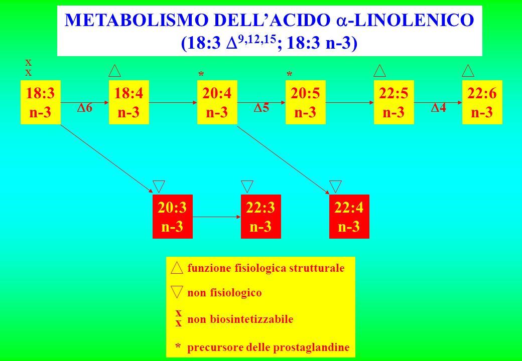 18:3 n-3 18:4 n-3 20:4 n-3 20:5 n-3 22:5 n-3 22:6 n-3 20:3 n-3 22:3 n-3 22:4 n-3 xxxx 6 4 5 ** METABOLISMO DELLACIDO -LINOLENICO (18:3 9,12,15 ; 18:3 n-3) funzione fisiologica strutturale non fisiologico xxxx non biosintetizzabile * precursore delle prostaglandine