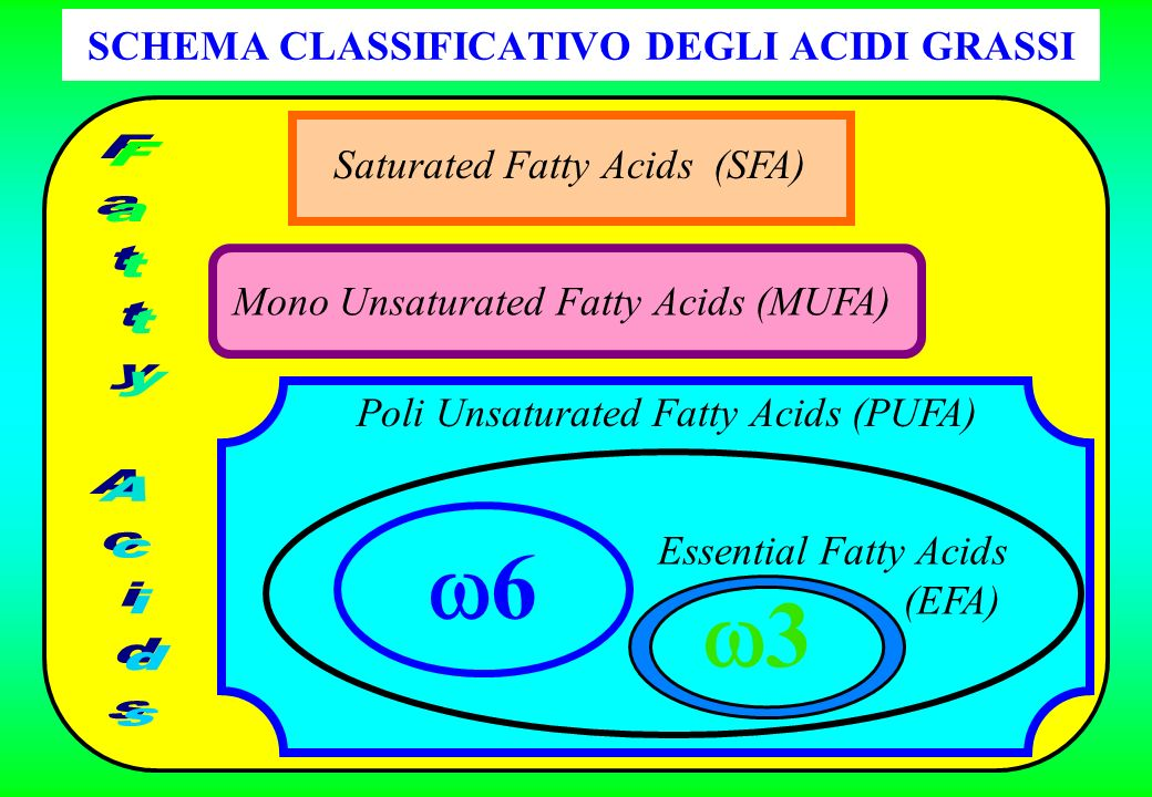 SCHEMA CLASSIFICATIVO DEGLI ACIDI GRASSI Saturated Fatty Acids (SFA) Mono Unsaturated Fatty Acids (MUFA) Poli Unsaturated Fatty Acids (PUFA) 6 3 Essen