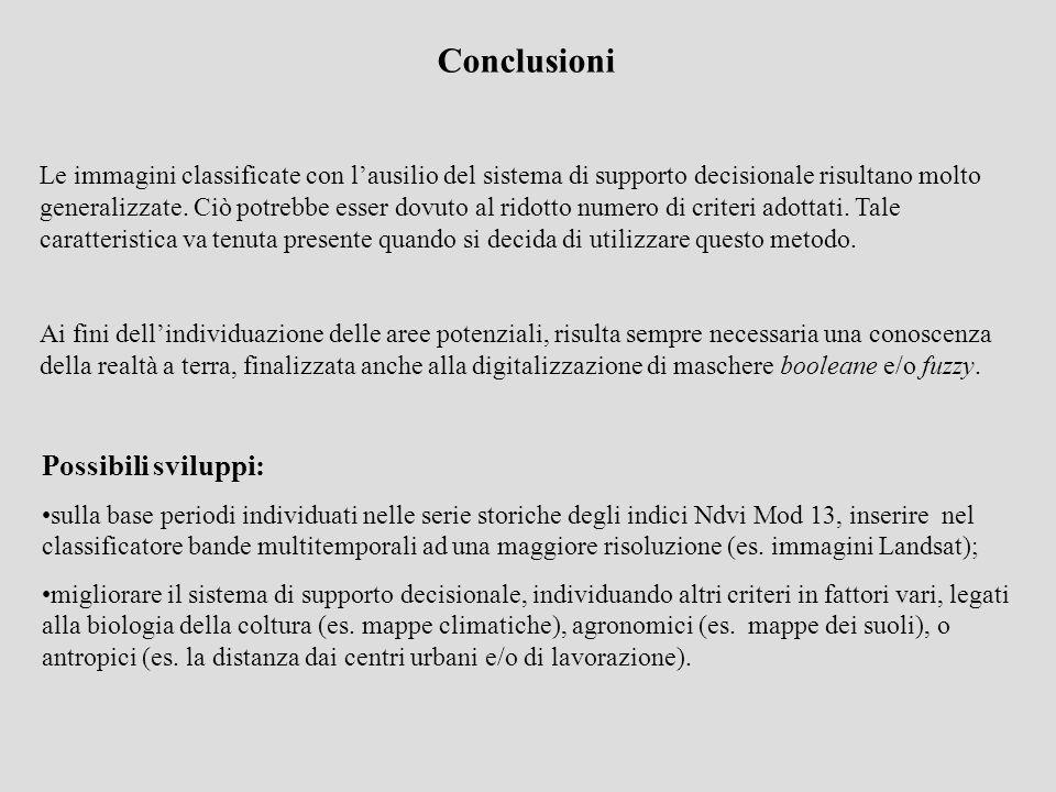 Conclusioni Le immagini classificate con lausilio del sistema di supporto decisionale risultano molto generalizzate. Ciò potrebbe esser dovuto al rido