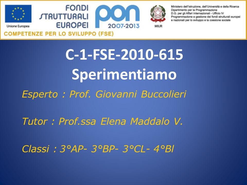 C-1-FSE-2010-615 Sperimentiamo Esperto : Prof. Giovanni Buccolieri Tutor : Prof.ssa Elena Maddalo V. Classi : 3°AP- 3°BP- 3°CL- 4°Bl
