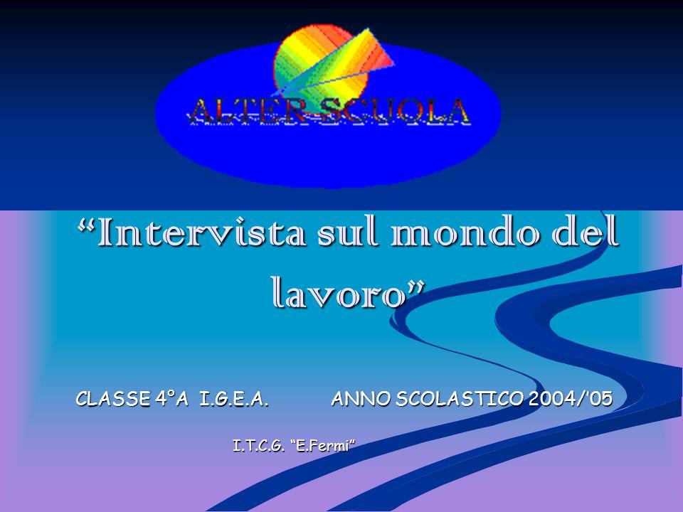 Intervista sul mondo del lavoro CLASSE 4°A I.G.E.A. ANNO SCOLASTICO 2004/05 CLASSE 4°A I.G.E.A. ANNO SCOLASTICO 2004/05 I.T.C.G. E.Fermi I.T.C.G. E.Fe
