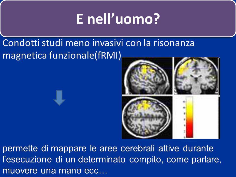 Condotti studi meno invasivi con la risonanza magnetica funzionale(fRMI) permette di mappare le aree cerebrali attive durante lesecuzione di un determ