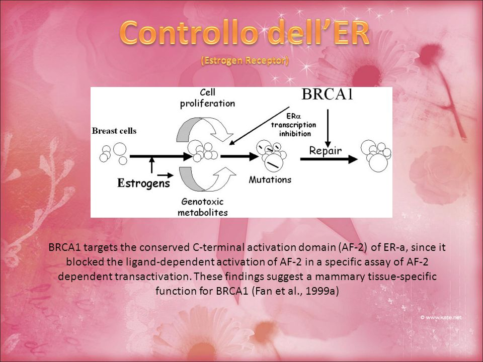 BRCA1 targets the conserved C-terminal activation domain (AF-2) of ER-a, since it blocked the ligand-dependent activation of AF-2 in a specific assay of AF-2 dependent transactivation.