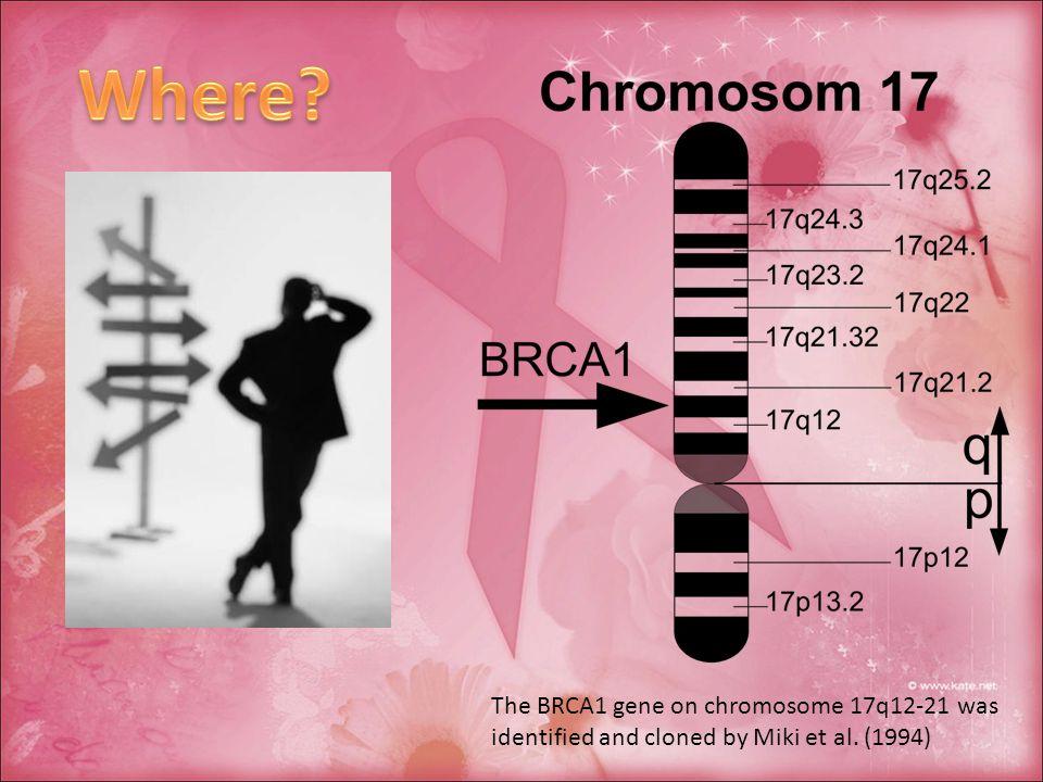 Mutazioni di BRCA1 o BRCA2 sono invece rare o del tutto assenti nei carcinomi mammari sporadici (non a carattere ereditario).
