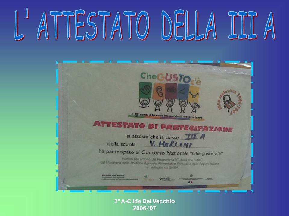 3° A-C Ida Del Vecchio 2006-07