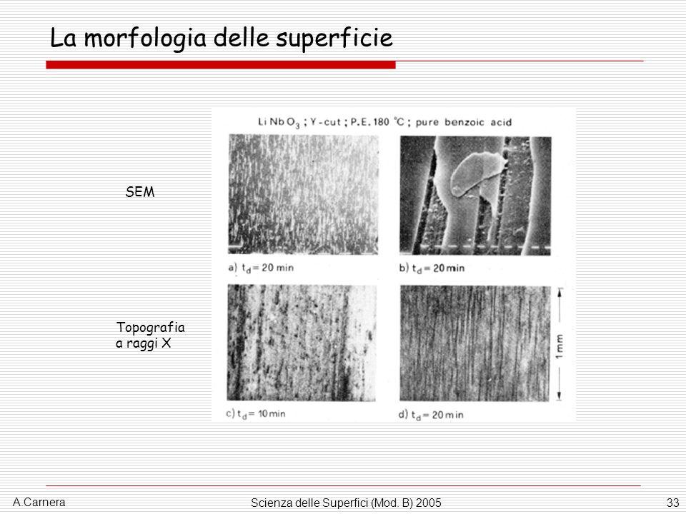 A.Carnera Scienza delle Superfici (Mod. B) 200533 La morfologia delle superficie SEM Topografia a raggi X