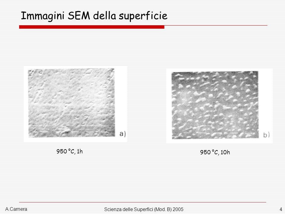 A.Carnera Scienza delle Superfici (Mod. B) 20054 Immagini SEM della superficie 950 °C, 1h 950 °C, 10h