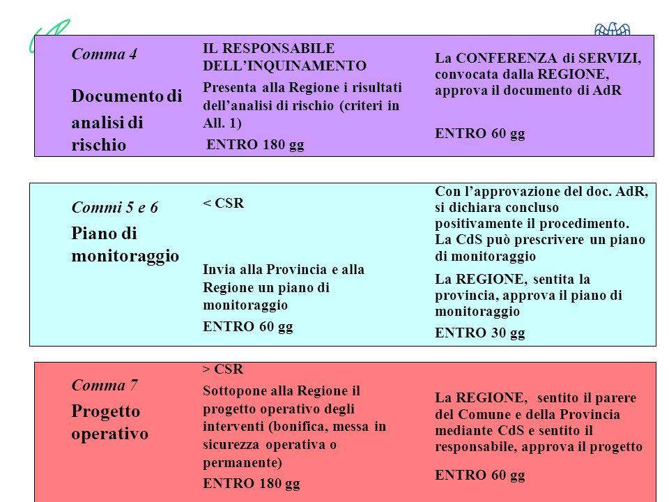 8 Comma 4 Documento di analisi di rischio Commi 5 e 6 Piano di monitoraggio Comma 7 Progetto operativo IL RESPONSABILE DELLINQUINAMENTO Presenta alla