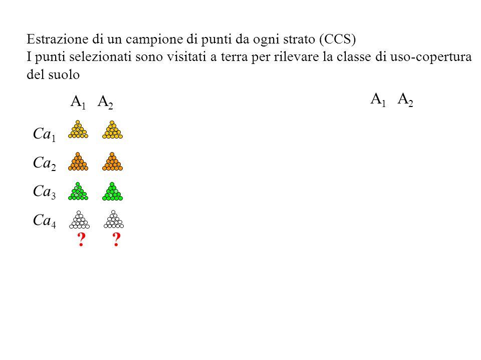 Estrazione di un campione di punti da ogni strato (CCS) I punti selezionati sono visitati a terra per rilevare la classe di uso-copertura del suolo A 1 A 2 Ca 1 Ca 2 Ca 3 Ca 4
