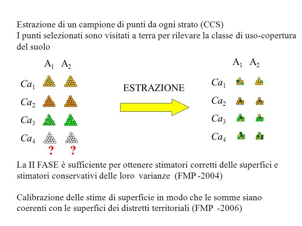 Estrazione di un campione di punti da ogni strato (CCS) I punti selezionati sono visitati a terra per rilevare la classe di uso-copertura del suolo La II FASE è sufficiente per ottenere stimatori corretti delle superfici e stimatori conservativi delle loro varianze (FMP-2004) Calibrazione delle stime di superficie in modo che le somme siano coerenti con le superfici dei distretti territoriali (FMP-2006) A 1 A 2 Ca 1 Ca 2 Ca 3 Ca 4 ESTRAZIONE A 1 A 2 Ca 1 Ca 2 Ca 3 Ca 4