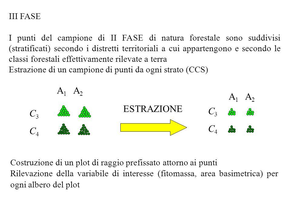 C3C4C3C4 ESTRAZIONE Costruzione di un plot di raggio prefissato attorno ai punti Rilevazione della variabile di interesse (fitomassa, area basimetrica) per ogni albero del plot C3C4C3C4 III FASE I punti del campione di II FASE di natura forestale sono suddivisi (stratificati) secondo i distretti territoriali a cui appartengono e secondo le classi forestali effettivamente rilevate a terra Estrazione di un campione di punti da ogni strato (CCS)