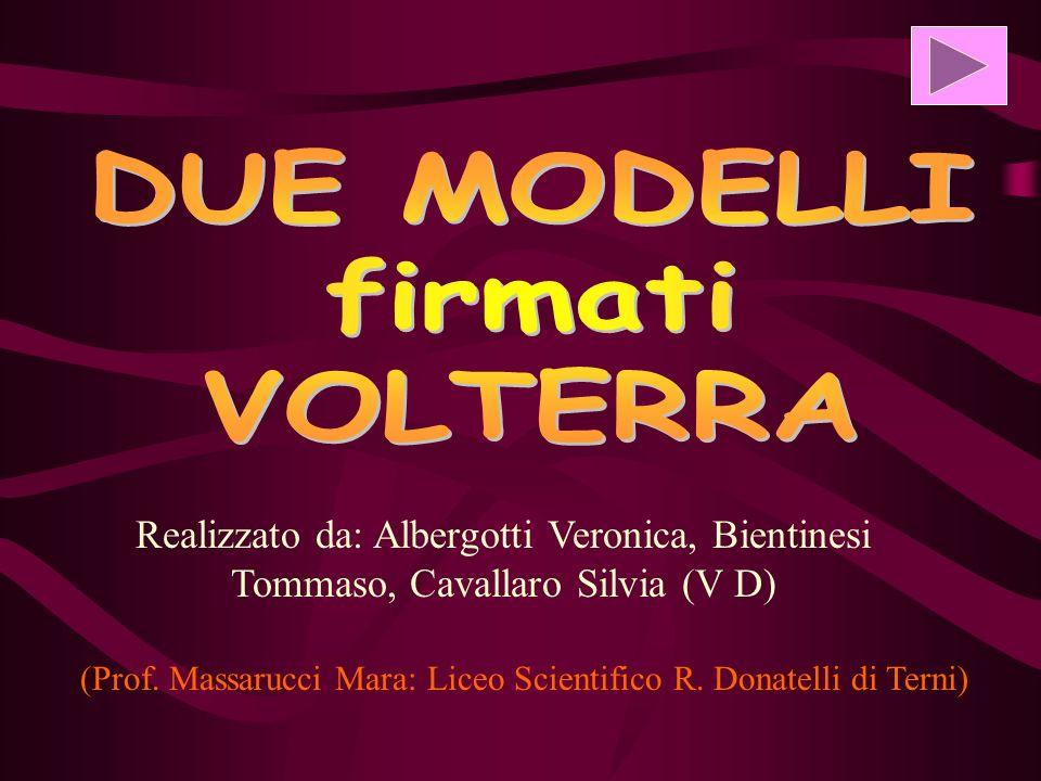 Realizzato da: Albergotti Veronica, Bientinesi Tommaso, Cavallaro Silvia (V D) (Prof.