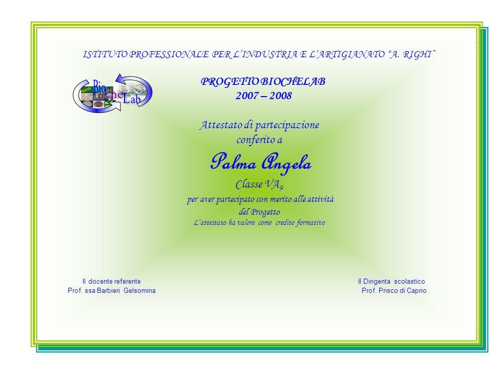 ISTITUTO PROFESSIONALE PER LINDUSTRIA E LARTIGIANATO A. RIGHI PROGETTO BIOCHELAB 2007 – 2008 Attestato di partecipazione conferito a Palma Angela Clas