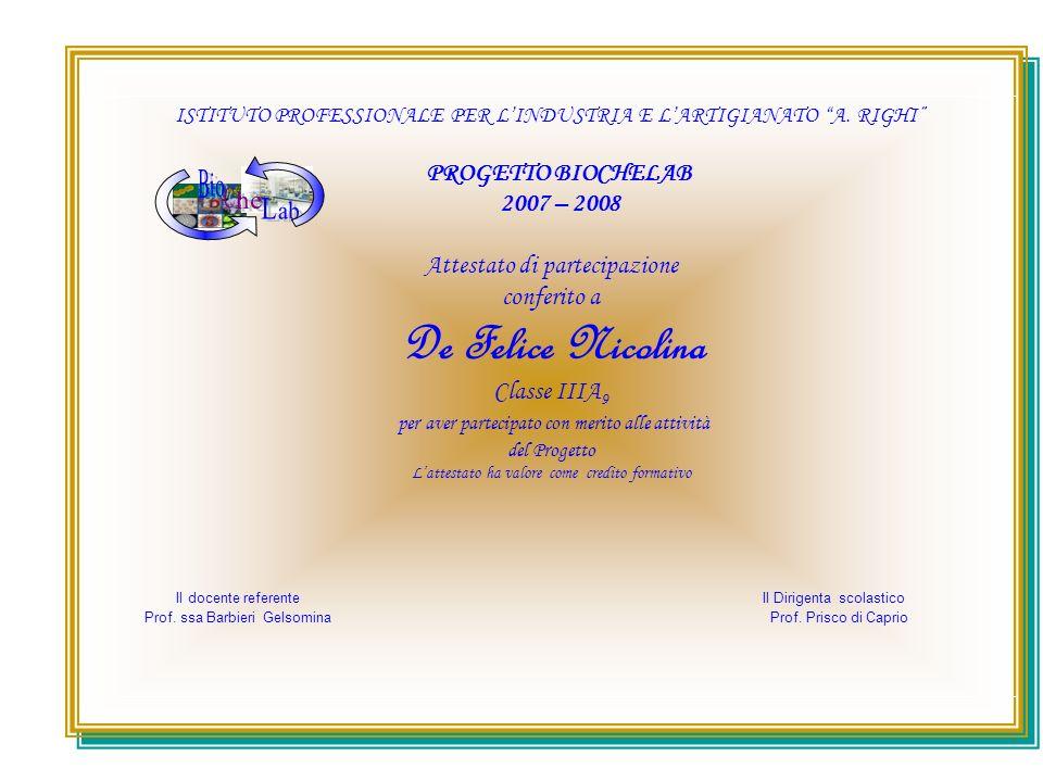 ISTITUTO PROFESSIONALE PER LINDUSTRIA E LARTIGIANATO A. RIGHI PROGETTO BIOCHELAB 2007 – 2008 Attestato di partecipazione conferito a De Felice Nicolin