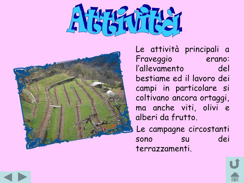 Le attività principali a Fraveggio erano: lallevamento del bestiame ed il lavoro dei campi in particolare si coltivano ancora ortaggi, ma anche viti,
