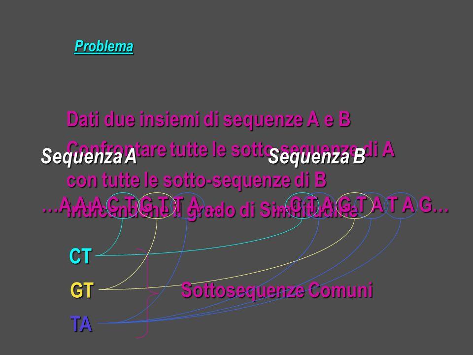 Dati due insiemi di sequenze A e B Confrontare tutte le sotto-sequenze di A con tutte le sotto-sequenze di B indicandone il grado di Similitudine Problema …A A A C T G T T A … …A A A C T G T T A … …C T A G T A T A G… …C T A G T A T A G… Sequenza A Sequenza B CT GT TA Sottosequenze Comuni