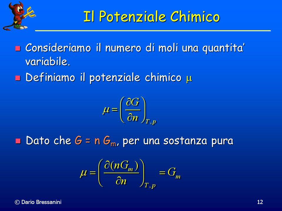 © Dario Bressanini12 Consideriamo il numero di moli una quantita variabile. Consideriamo il numero di moli una quantita variabile. Definiamo il potenz