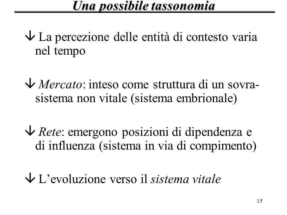15 â La percezione delle entità di contesto varia nel tempo â Mercato: inteso come struttura di un sovra- sistema non vitale (sistema embrionale) â Re