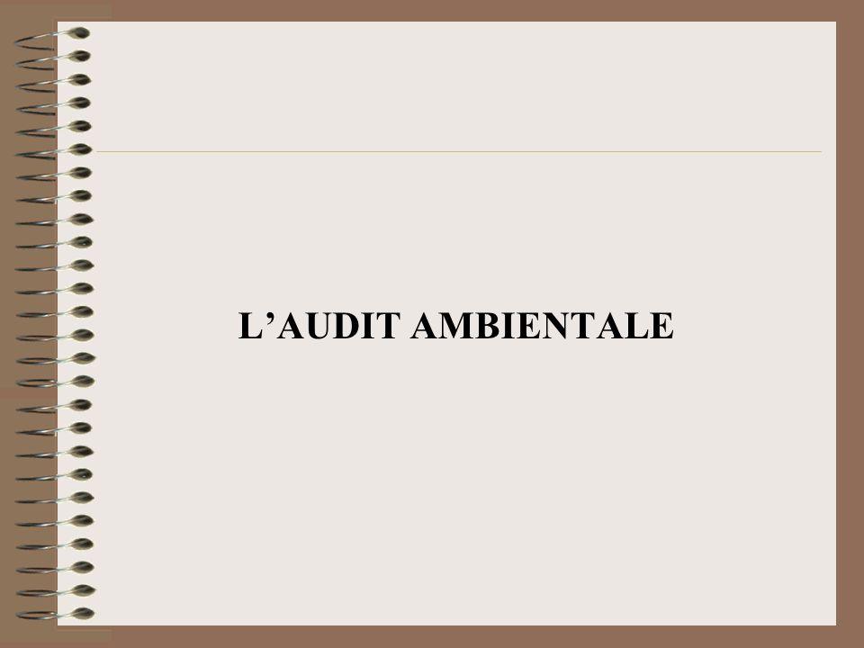 LAUDIT AMBIENTALE