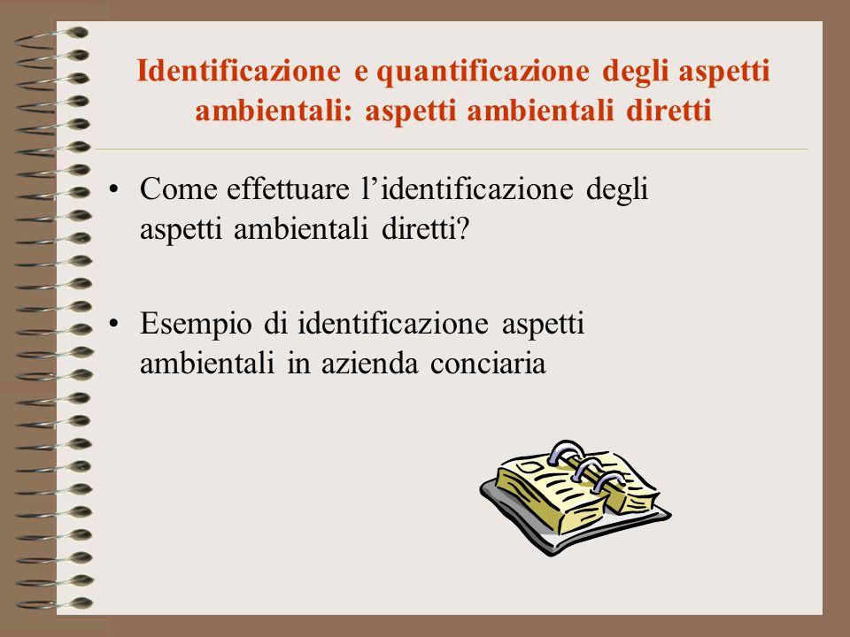 Identificazione e quantificazione degli aspetti ambientali: aspetti ambientali diretti Come effettuare lidentificazione degli aspetti ambientali diret