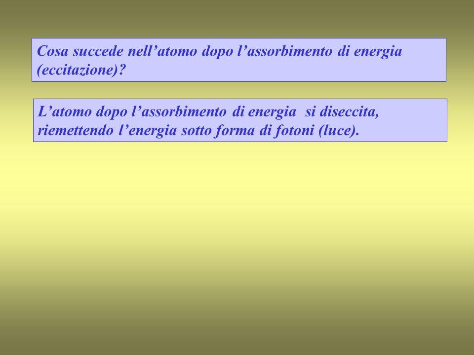 Cosa succede nellatomo dopo lassorbimento di energia (eccitazione).