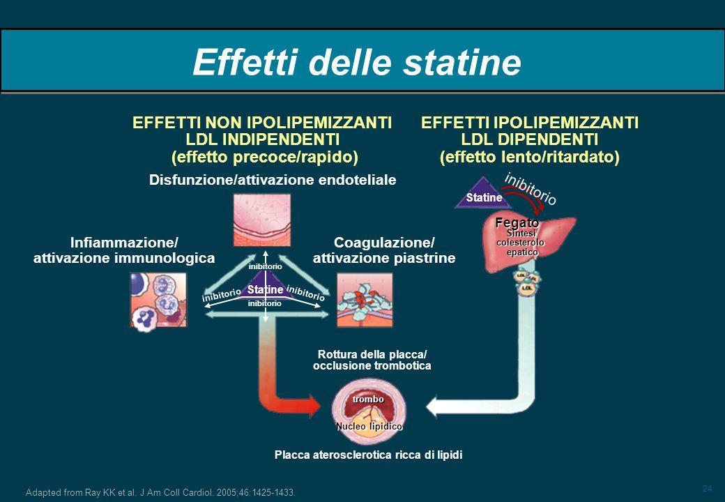 24 Adapted from Ray KK et al. J Am Coll Cardiol. 2005;46:1425-1433. Effetti delle statine inibitorio Statine Fegato Sintesicolesteroloepatico Rottura