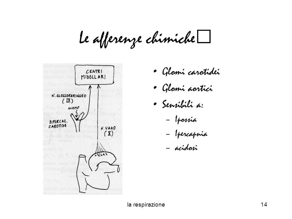 la respirazione14 Le afferenze chimiche Glomi carotidei Glomi aortici Sensibili a: –Ipossia –Ipercapnia –acidosi