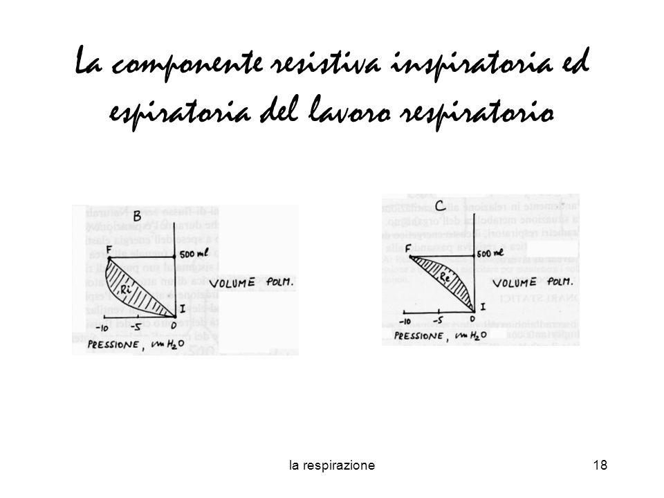 la respirazione18 La componente resistiva inspiratoria ed espiratoria del lavoro respiratorio