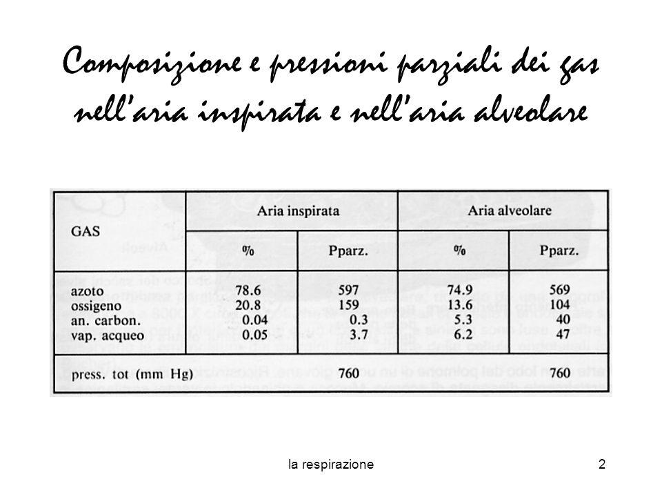 la respirazione2 Composizione e pressioni parziali dei gas nellaria inspirata e nellaria alveolare