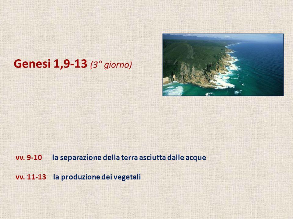 Genesi 1,9-13 (3° giorno) vv. 9-10 la separazione della terra asciutta dalle acque vv. 11-13 la produzione dei vegetali