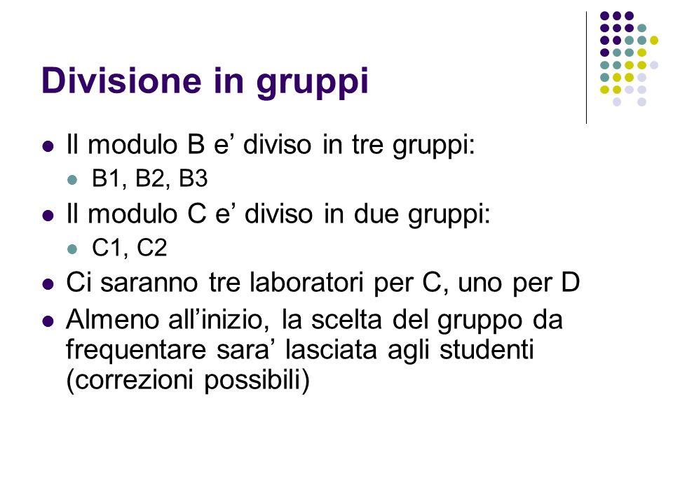 Divisione in gruppi Il modulo B e diviso in tre gruppi: B1, B2, B3 Il modulo C e diviso in due gruppi: C1, C2 Ci saranno tre laboratori per C, uno per D Almeno allinizio, la scelta del gruppo da frequentare sara lasciata agli studenti (correzioni possibili)