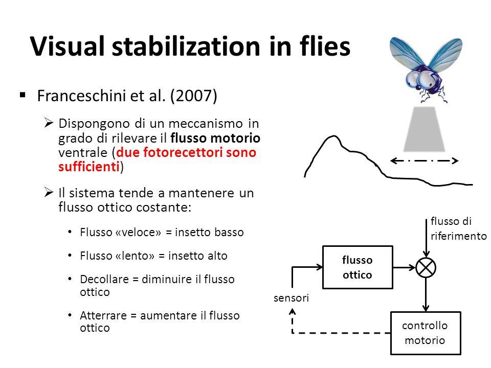 Visual stabilization in flies Franceschini et al. (2007) Dispongono di un meccanismo in grado di rilevare il flusso motorio ventrale (due fotorecettor