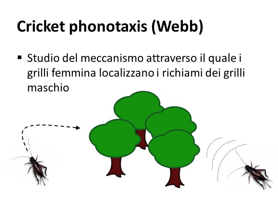 Cricket phonotaxis (Webb) Studio del meccanismo attraverso il quale i grilli femmina localizzano i richiami dei grilli maschio