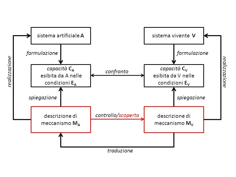 descrizione di meccanismo M V sistema vivente V capacità C V esibita da V nelle condizioni E V sistema artificiale A capacità C A esibita da A nelle c