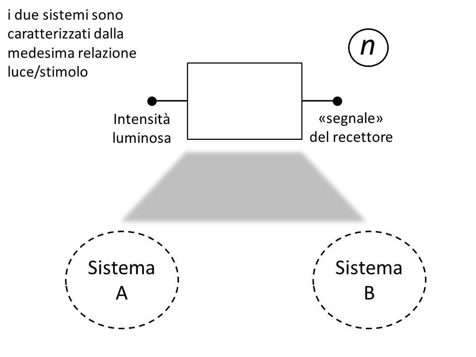 «segnale» del recettore Intensità luminosa n i due sistemi sono caratterizzati dalla medesima relazione luce/stimolo Sistema A Sistema B