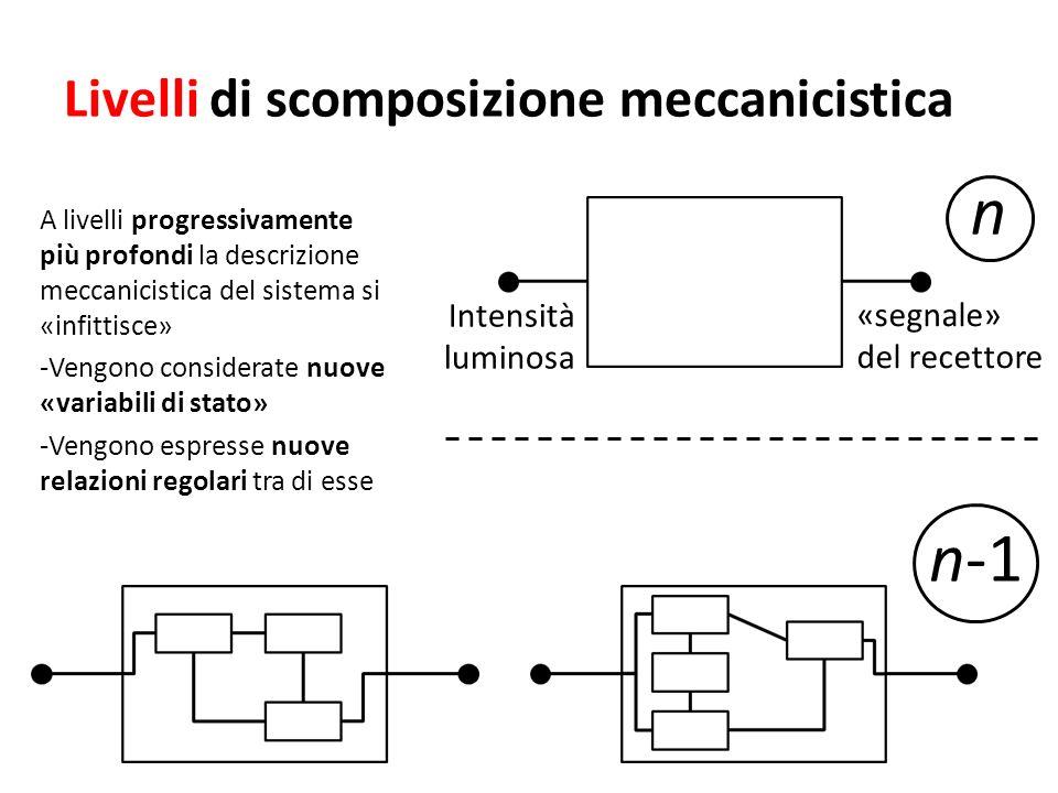 Livelli di scomposizione meccanicistica A livelli progressivamente più profondi la descrizione meccanicistica del sistema si «infittisce» -Vengono con