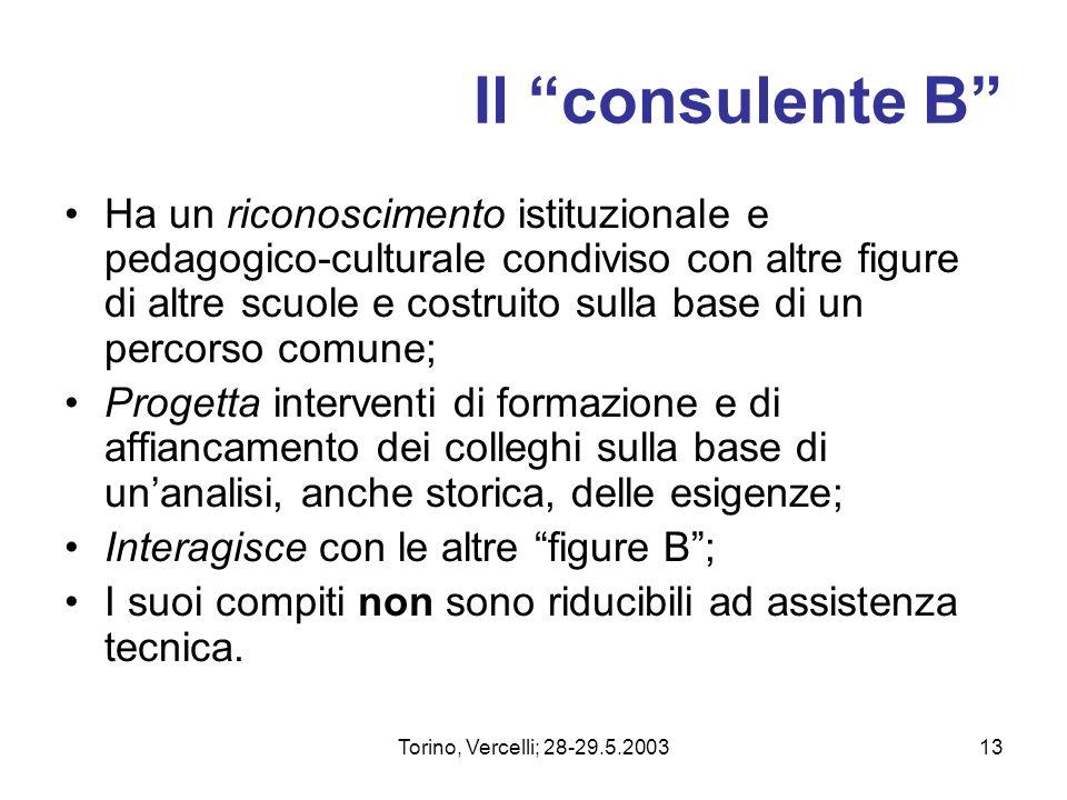 Torino, Vercelli; 28-29.5.200313 Il consulente B Ha un riconoscimento istituzionale e pedagogico-culturale condiviso con altre figure di altre scuole