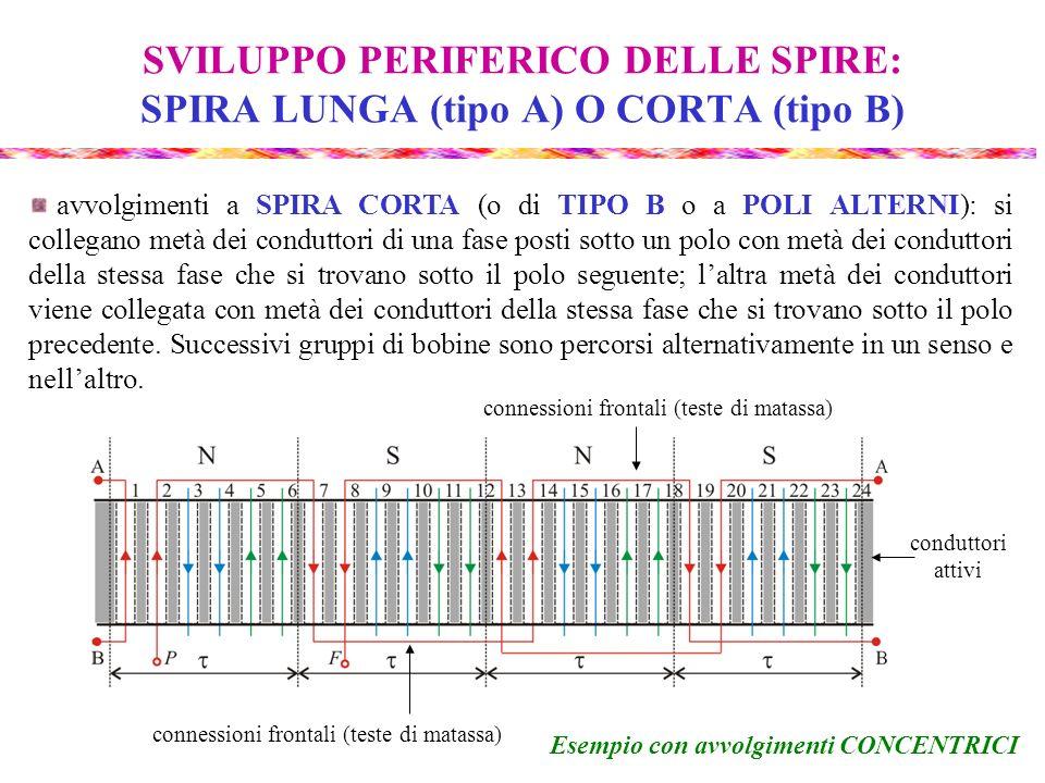 SVILUPPO PERIFERICO DELLE SPIRE: SPIRA LUNGA (tipo A) O CORTA (tipo B) avvolgimenti a SPIRA CORTA (o di TIPO B o a POLI ALTERNI): si collegano metà de