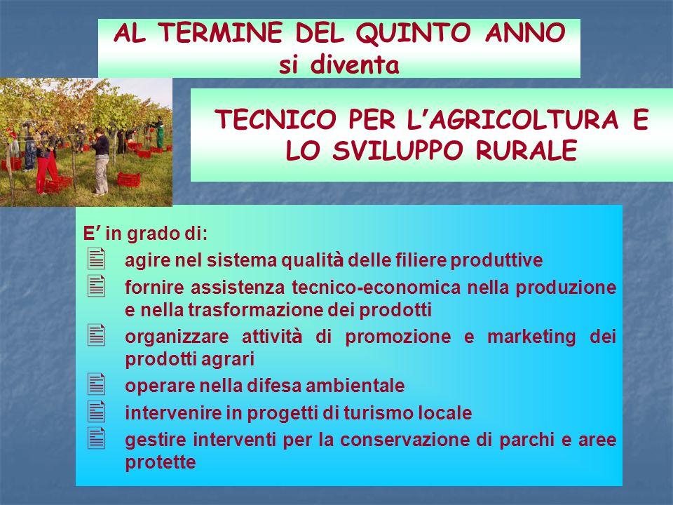 TECNICO PER L AGRICOLTURA E LO SVILUPPO RURALE E in grado di: agire nel sistema qualit à delle filiere produttive fornire assistenza tecnico-economica