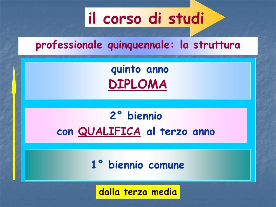 il corso di studi professionale quinquennale: la struttura 1° biennio comune 2° biennio con QUALIFICA al terzo anno quinto anno DIPLOMA dalla terza me