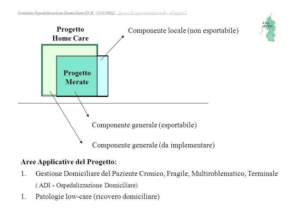 Comitato Ospedalizzazione Domiciliare (D.M. 12/4/2002)Comitato Ospedalizzazione Domiciliare (D.M. 12/4/2002) - Ipotesi di sperimentazione B – Allegato
