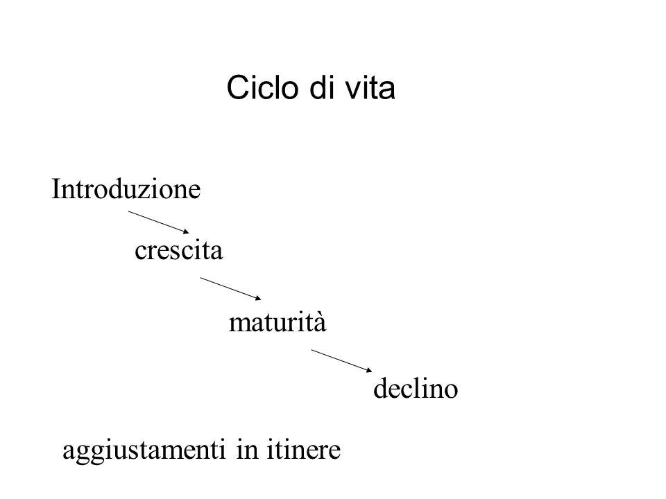 Ciclo di vita Introduzione aggiustamenti in itinere crescita maturità declino