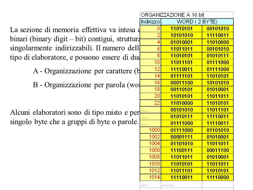 La sezione di memoria effettiva va intesa come una successione di enti binari (binary digit – bit) contigui, strutturati in gruppi o locazioni, singol