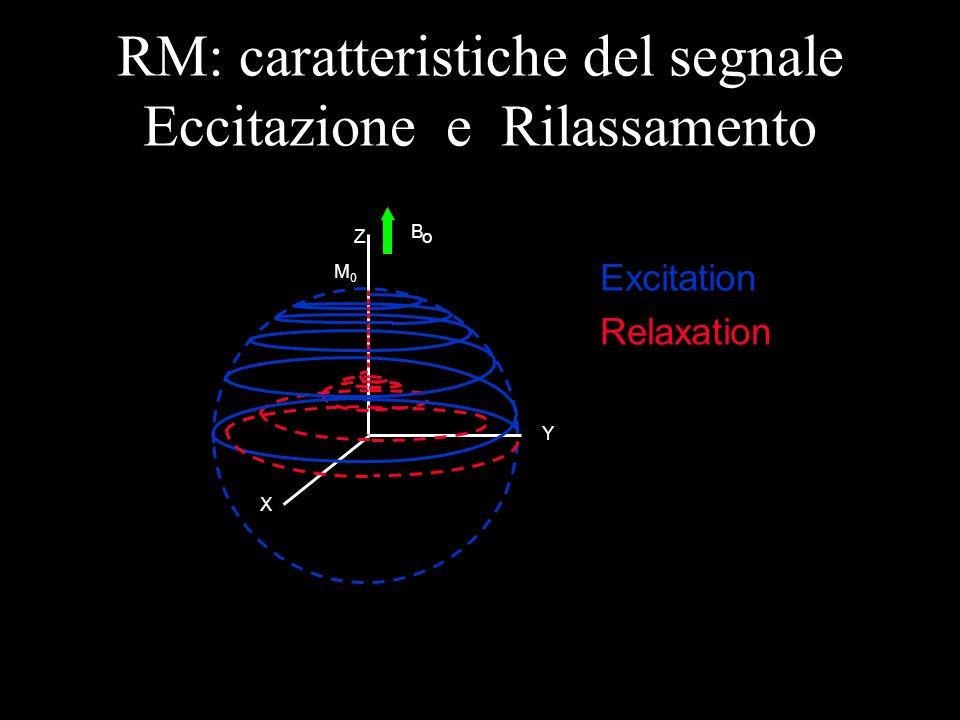 X Z B o M0M0 RM: caratteristiche del segnale Eccitazione e Rilassamento Excitation Relaxation Y