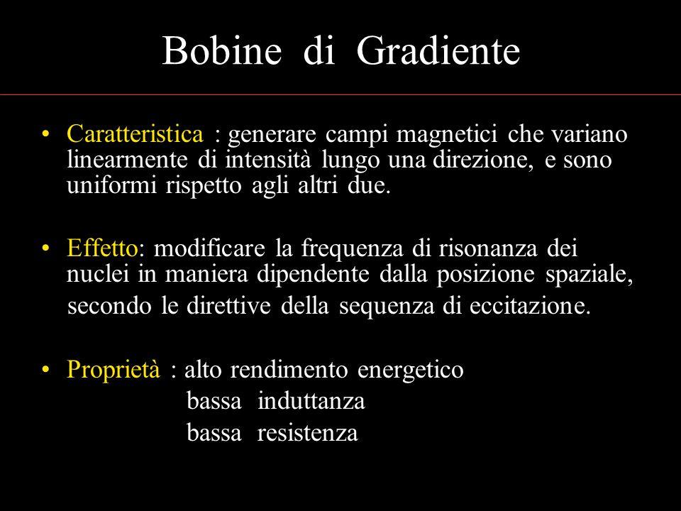 Bobine di Gradiente Caratteristica : generare campi magnetici che variano linearmente di intensità lungo una direzione, e sono uniformi rispetto agli altri due.