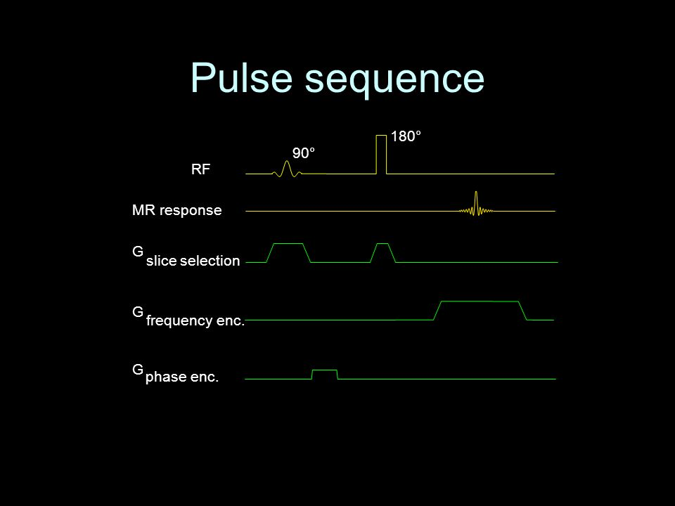 Pulse sequence RF MR response G phase enc. G frequency enc. G slice selection 90° 180°
